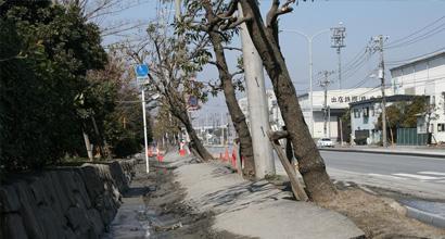 目標を見失いかけた東日本大震災の影響(34歳)